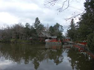 Ikushimatarshima