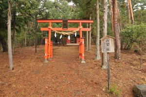 Yamamiya1